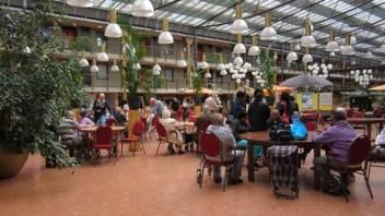 Asiel Alphen in Rotterdam