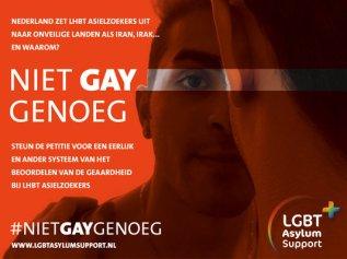 Niet gay Genoeg